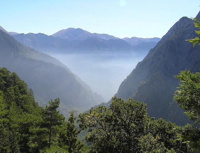 mist between green mountains