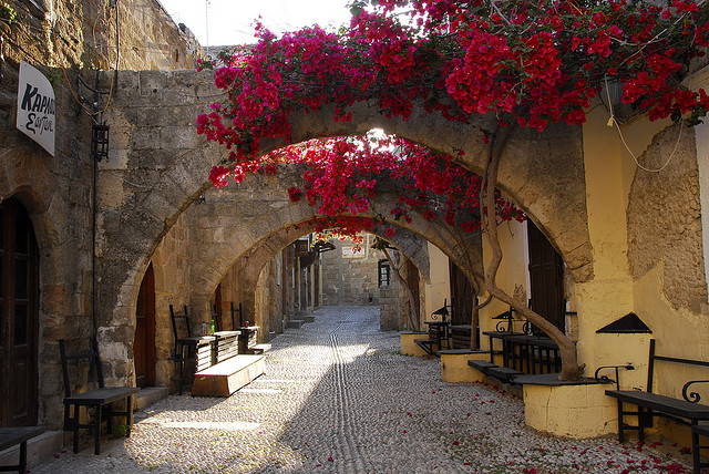 arches with red flowers