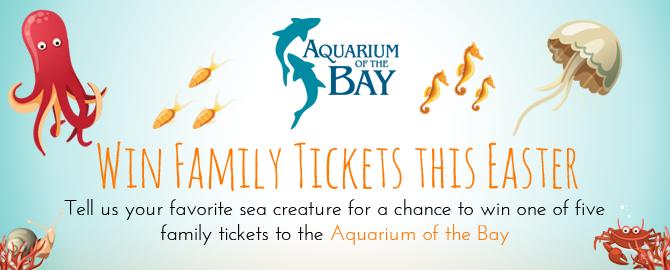 Aquarium of the Bay Win Tickets