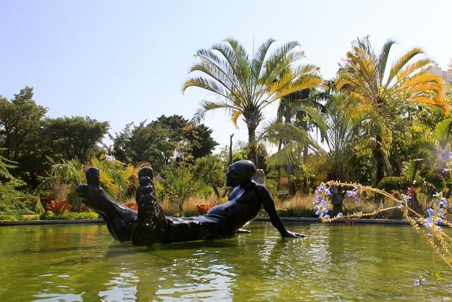miami-botanical-gardens