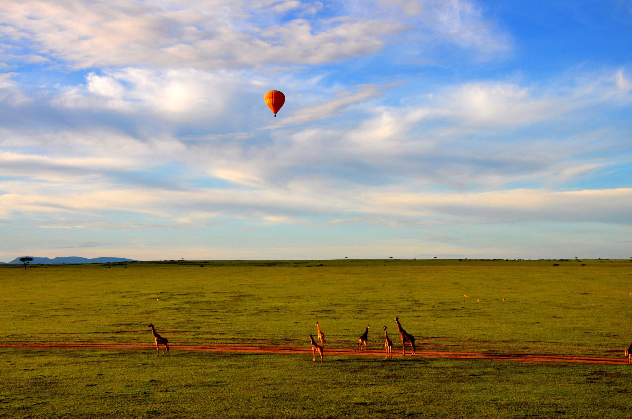 mara-balloon-safari