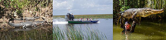 Florida Airboat Rides