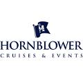 Hornblower International Sightseeing Cruise