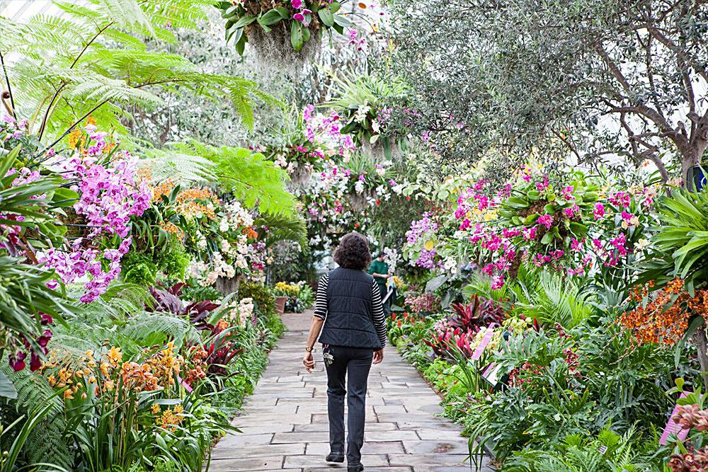 New York Botanical Garden - All-Garden Pass