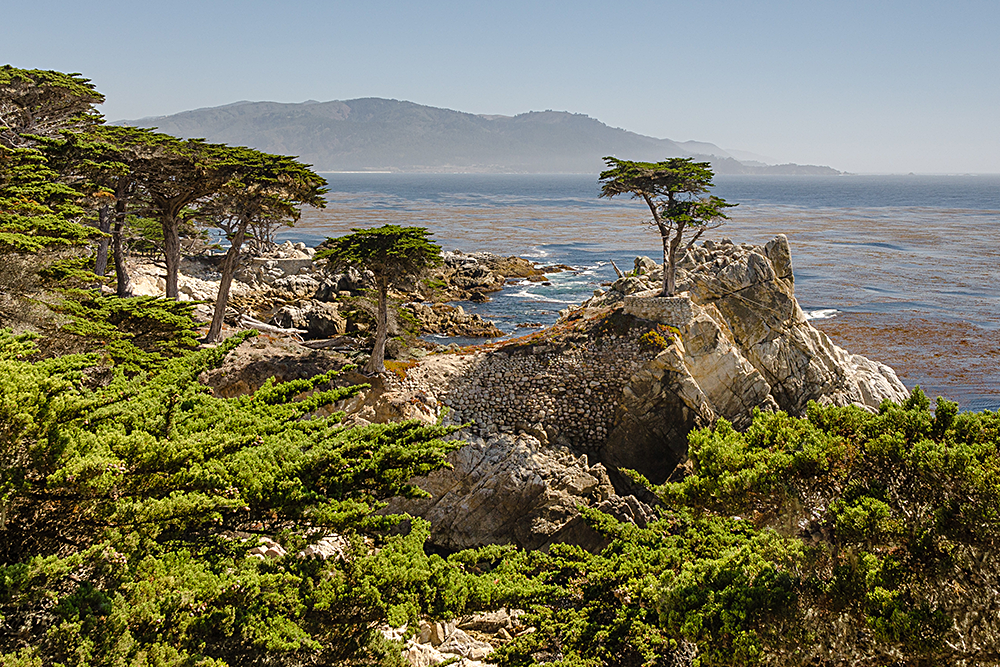 Monterey and Carmel Day Tour