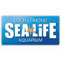 Sea Life Centre Loch Lomond
