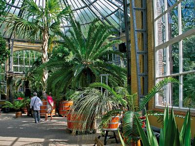 Discount Amsterdam garden