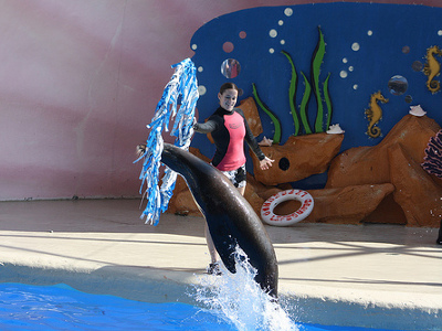 15+ active The Florida Aquarium coupons, promo codes & deals for Dec. Most popular: Save $ on General Adult Admission Ticket.